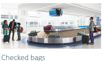 american airlines checked baggage