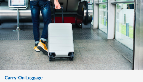 copa airlines baggage